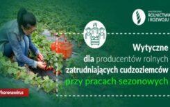 Więcej o: Wytyczne dla producentów rolnych zatrudniających cudzoziemców przy pracach sezonowych